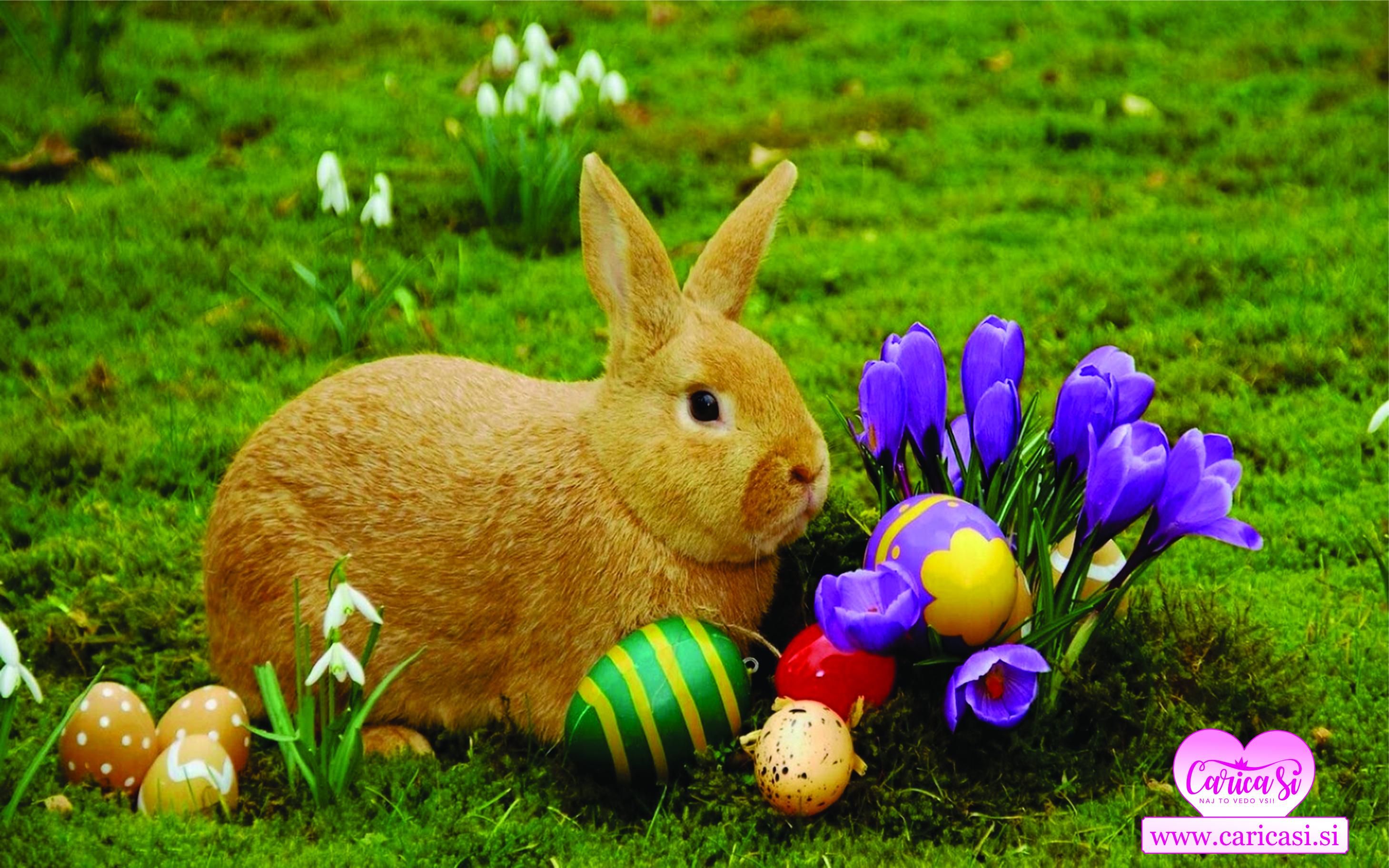 Vesele velikonočne praznike!